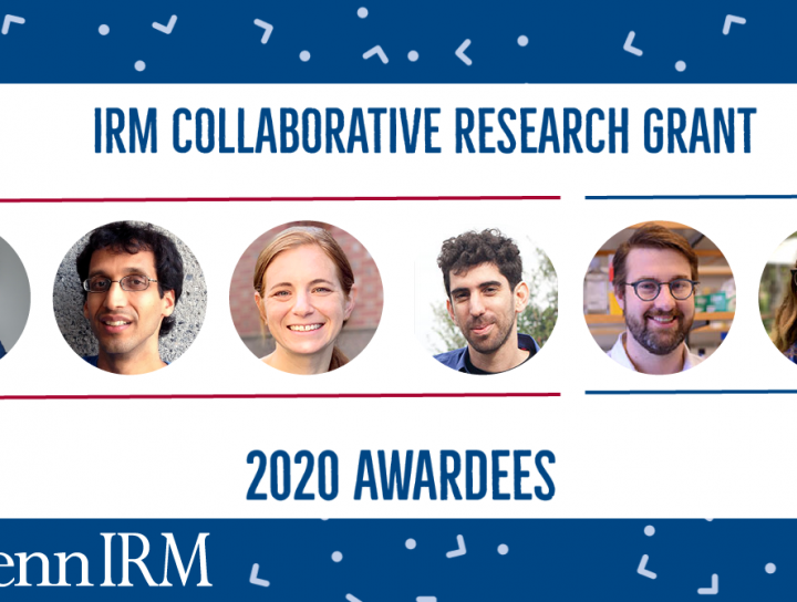 The IRM's 2020 CRG awardees will be using regenerative medicine techniques to research COVID-19